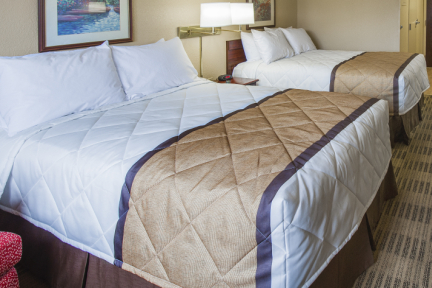 Estudio Deluxe - 2 camas matrimoniales